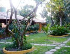 Jardim das Margaridas