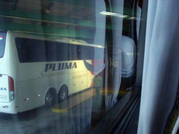 Omnibus Pluma en Brasil